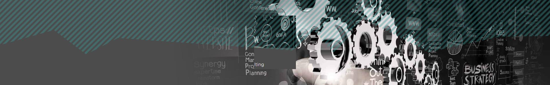 Schmietex GmbH: Consulting